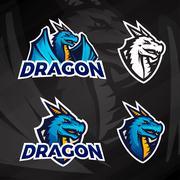 Creative dragon logo concept. Sport mascot design. College league insignia Stock Illustration