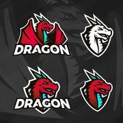 Creative dragon logo template. Sport mascot design. College league insignia Stock Illustration