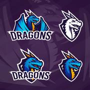 Creative dragon logo template. Sport mascot design. College league insignia Stock Illustration