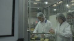 4K Quality control workers in pharmaceutical factory Stock Footage