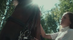 Female rider and horse in a sunny forest. Woman stroking the horse Stock Footage