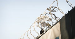 Barbed Wire Fence - Brooklyn - closeup - establishing shot - 4k Stock Footage