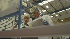 4K 4K Workers on a production line Stock Footage