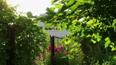 Panorama of two-story private house through branches of tree. Slow motion. HD Stock Footage