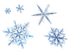 Set of natural snowflakes isolated on a white background Stock Photos