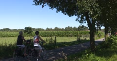 Group of female cyclists passing in Dutch countryside, chatting Stock Footage