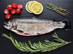 Fresh trout, tomatoes, lemon, rosemary Stock Photos