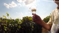 A Winemaker in His Vineyard Testing the Quality of Wine Stock Footage