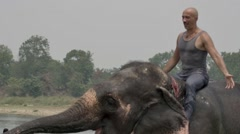Man have a shower on the elephant Stock Footage