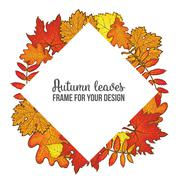 Round frame with fall leaves - maple, oak, rowan, birch Piirros