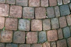 Arched stone pavers on a pathway Stock Photos