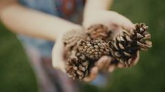 Handful of pine cones in little hands of girl Stock Footage
