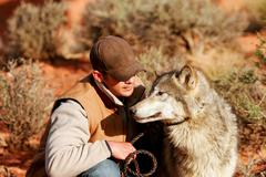 Gray wolf with an animal trainer Stock Photos