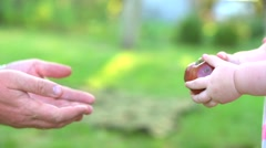 Baby hands giving an apple to senior hands in orchard. Stock Footage