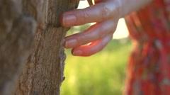 Beautiful young woman enjoying nature, touching tree outdoor. Stock Footage