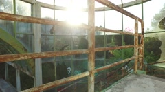 Walking abandoned steel structure glass building steady shot gimbal 4k Stock Footage