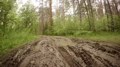Muddy Track through a Wilderness Area on a Cloudy Day. Video 4k Stock Footage