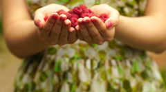 Footage Woman holding a raspberry close up Stock Footage