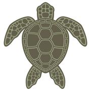Green Sea Turtle Piirros