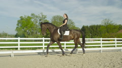 SLOW MOTION: Beautiful dark bay stallion trotting straight forward in manege Stock Footage