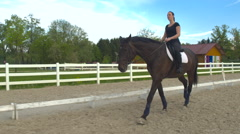Young female rider walking her horse on long reins, warming him up for training Stock Footage