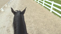 FIRST PERSON VIEW: Riding a tall dark horse, walking around in sandy manege Stock Footage