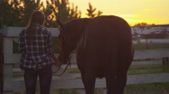 Sunset silhouette of young woman and horse Stock Footage