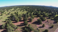 Flying Over North Central Arizona High Wooded Plateau- Valle AZ Stock Footage