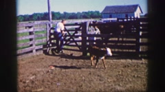 1961: man tries to approach baby farm animal but animal shies away IOWA Stock Footage