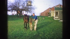 1961: man assists baby horse as if it were child riding bike without training Stock Footage