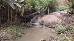 Waterfall in Natural Tropical Jungle - Thailand Arkistovideo