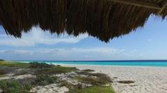 HD underneath palm tree hut on Caribbean island, Klein Curacao Stock Footage