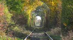 Abandoned railway under autumn colored trees tunnel, golden leafs falling down Stock Footage