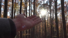 Hand touching the sun shinning in autumn forest Stock Footage