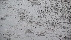 Rain drop falling down, circles in swamp Stock Footage