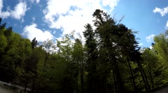 Car view passing through spring green forest, with fluffy clouds on the blue sky Stock Footage