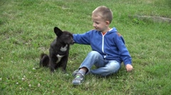 Little boy sitting on the grass and caressind a playfull dog Stock Footage