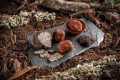 Delicious chocolate pralines Stock Photos