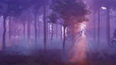 Misty pine forest at sunset time lapse 4K Stock Footage