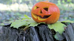 Jack lantern pumpkin on autumn leaves Stock Footage