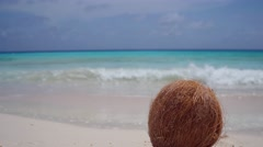 Coconut lying on white sandy beach on tropical island Klein Curacao Stock Footage