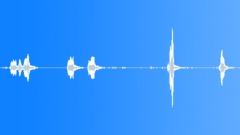 Common Crane. Bird calls Sound Effect