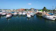 Aerial of docked fishing boats at marina on Curacao Stock Footage