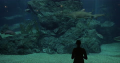 Woman in oceanarium with sharks Stock Footage
