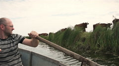 Fisherman floating on a boat near the cows. Slowmotion Stock Footage