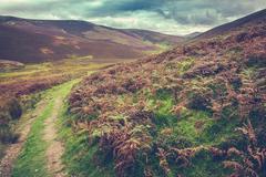 Scottish Borders Rural Landscape Stock Photos