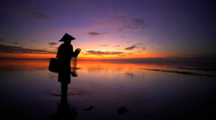 Balinese fisherman casting a fishing net in a tropical lagoon at sunset Stock Footage