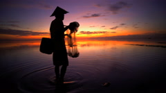 Male worker in Bali fishing with traditional net in a tropical lagoon at dusk Stock Footage