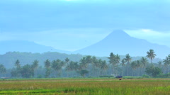 Mt Merapi volcano behind rural farmer working in rice fields Java Indonesia Stock Footage