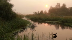 Landscape with river morning. Stock Footage